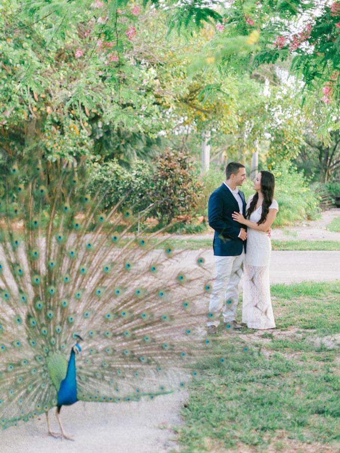 Crandon Gardens Engagement