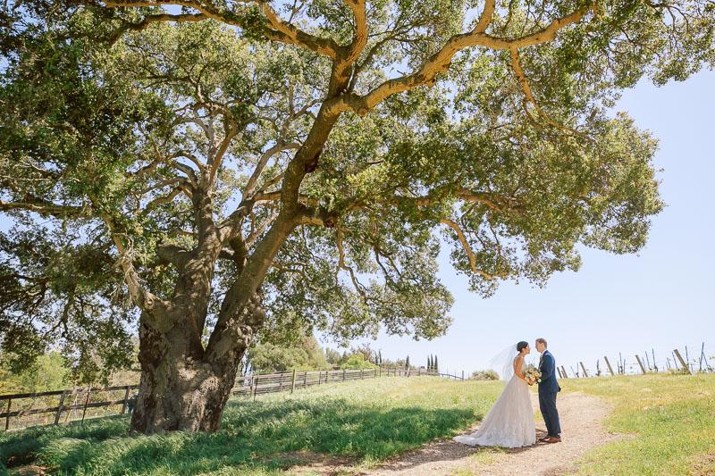 Buttonwood Winery Wedding