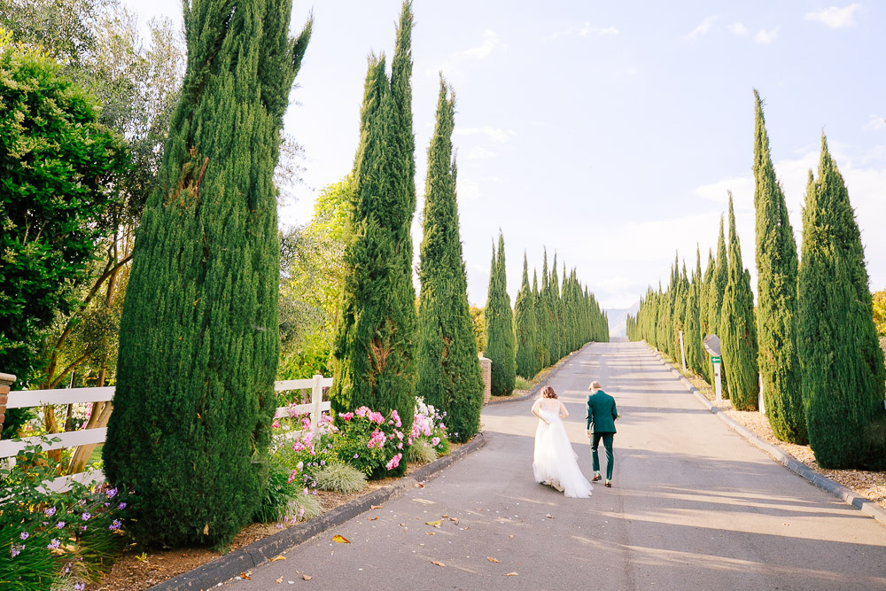 Bella Vista Groves Wedding