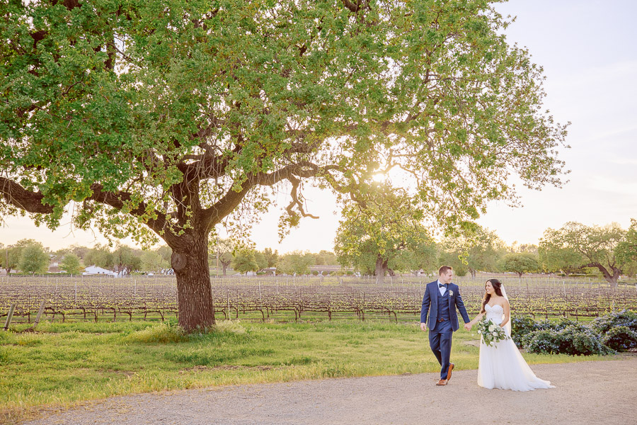 Santa Ynez Winery Wedding